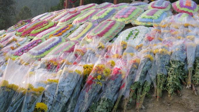 Những bó hoa đan kín phần mộ Đại tướng