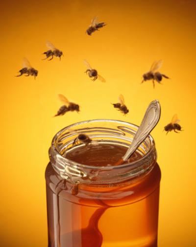Mật ong: Thêm nhiều công dụng chưa ai biết 2