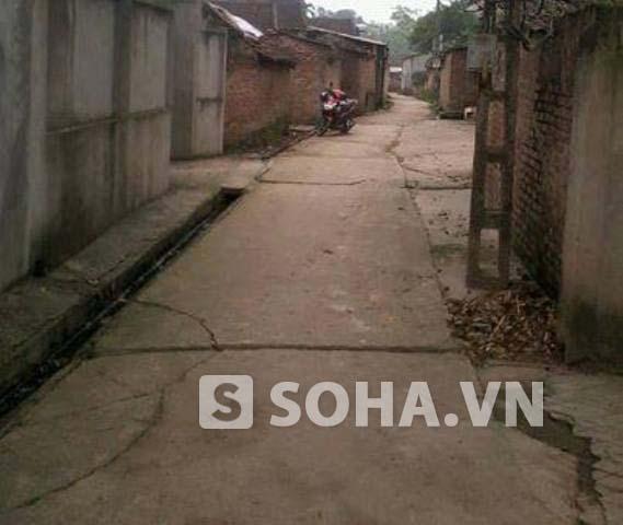 Con đường dẫn vào nhà Trần Xuân Yến nằm cách nhau chưa đầy 20m.