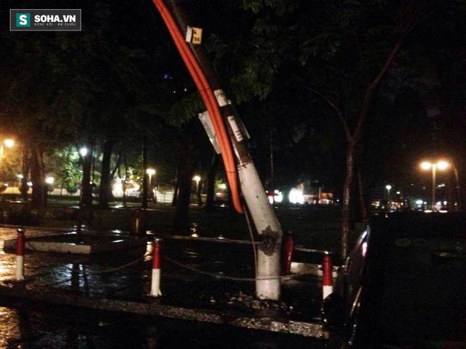 Cây bật gốc kéo ngã trụ điện, đè trúng 7 ô tô trong trận mưa lớn - Ảnh 6.
