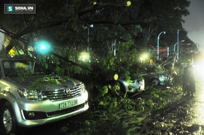 Cây bật gốc kéo ngã trụ điện, đè trúng 7 ô tô trong trận mưa lớn - Ảnh 1.