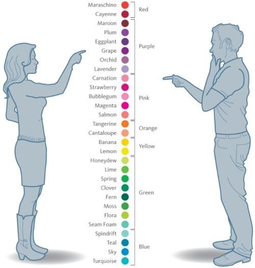 Nếu trả lời sai câu hỏi màu sắc này thì mắt bạn hoàn toàn... bình thường! - Ảnh 3.