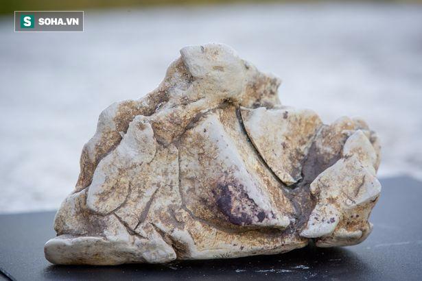 Quăng lưới đánh cá, người ngư dân may mắn vớ được báu vật nặng 60kg, trị giá 57 tỉ đồng - Ảnh 1.