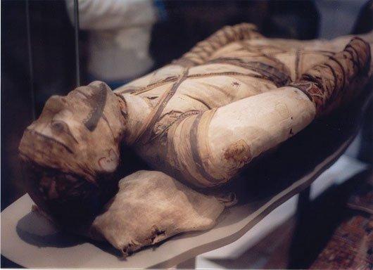 Truy tìm lời giải cho bí ẩn công nghệ ướp xác ngàn năm của người Ai Cập cổ đại - Ảnh 1.
