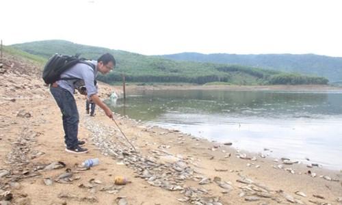 Cá chết hàng loạt, phủ trắng hồ ở Quảng Nam - Ảnh 2.