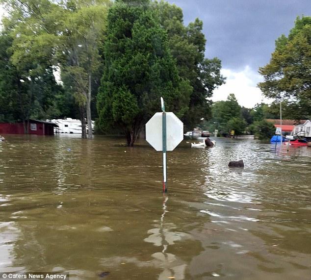 Rùng mình cảnh tượng quan tài trôi nổi trên đường phố vì mưa lũ - Ảnh 6.