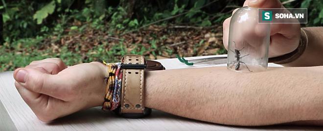 Nổi da gà với nghi thức trưởng thành đau đớn đến rợn người của thổ dân Amazon - Ảnh 1.