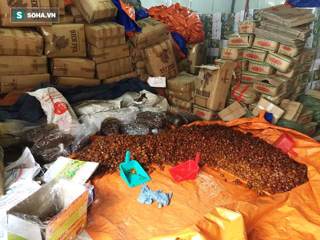 TP HCM: Kinh hãi phát hiện nhiều tấn mứt đầy ruồi nhặng chuẩn bị bán ra thị trường Tết - Ảnh 6.
