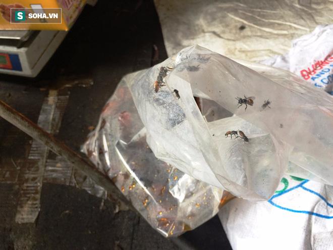 TP HCM: Kinh hãi phát hiện nhiều tấn mứt đầy ruồi nhặng chuẩn bị bán ra thị trường Tết - Ảnh 9.