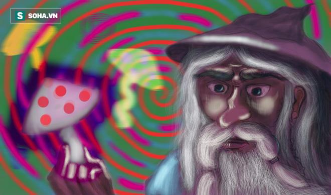 Bí ẩn loài nấm ma thuật  không chỉ gây ảo giác mà còn thay đổi tính cách con người... vĩnh viễn! - Ảnh 1.