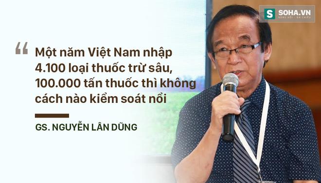 Người Việt từng được ăn đồ rất sạch và rất rẻ - Ảnh 5.