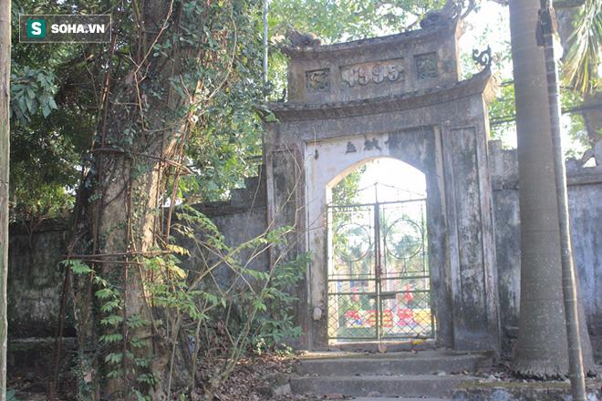 Áo giáp sắt hàng chục mét bảo vệ cây sưa 100 tỷ ở Hà Nội - Ảnh 1.