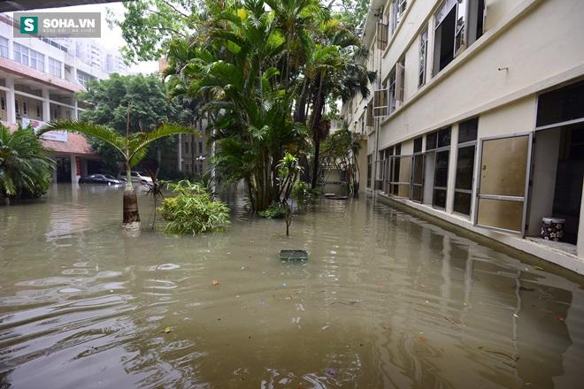 Trường ĐH Kiến Trúc có chỗ ngập 80cm, trông như một chiếc ao lớn - Ảnh 9.