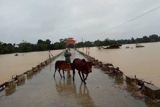 Hàng trăm nhà dân ở Hà Tĩnh bị ngập, hơn 30 nghìn học sinh phải nghỉ học - Ảnh 3.