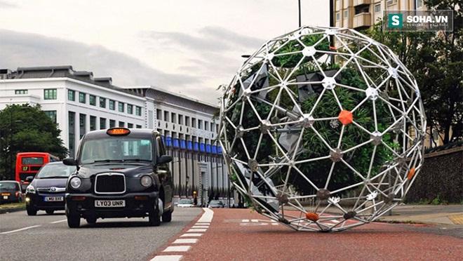 Đột phá: Sáng tạo vườn cây di động đi khắp thành phố - Ảnh 1.