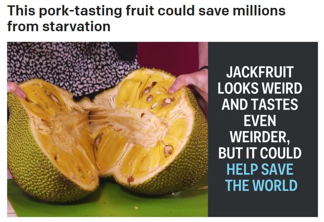Báo Mỹ đưa tin về thứ hoa quả đặc sản ở Việt Nam có thể cứu đói cho hàng triệu người - Ảnh 1.