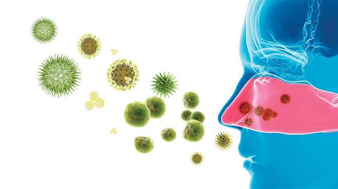 Vì sao kháng sinh chỉ diệt được vi khuẩn mà không diệt được virus? - Ảnh 1.