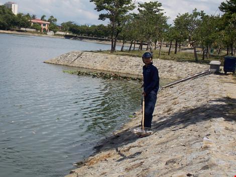 Quảng Nam: Cá chết nổi đầy hồ Nguyễn Du - Ảnh 1.
