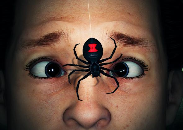 Sẽ ra sao nếu bị loài nhện tàn độc nhất thế giới cắn? - Ảnh 1.