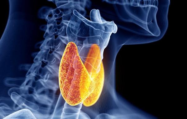 Cơ thể xuất hiện những dấu hiệu này, chắc chắn bạn đã bị viêm tuyến giáp mãn tính - Ảnh 1.