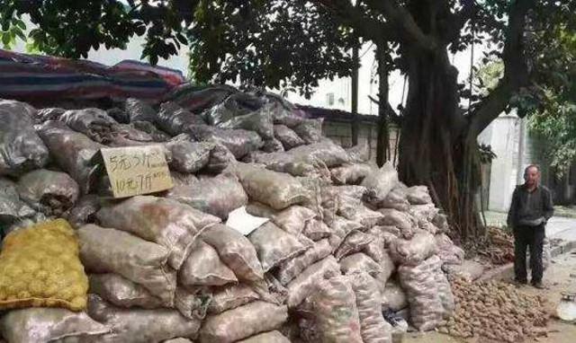 Lão nông khốn khổ với 32 tấn khoai tây bị trả lại vậy nhưng chỉ trong 1 đêm điều kỳ diệu đã xảy ra - Ảnh 2.