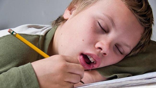 Tại sao chúng ta bị chảy nước miếng khi ngủ? - Ảnh 1.