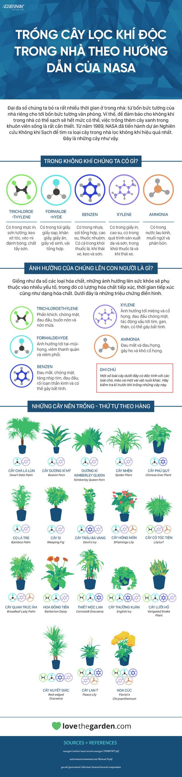 [Infographic] Đây là những cây mà NASA khuyên bạn nên trồng trong nhà - Ảnh 1.