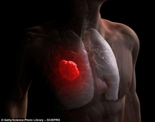 Cứ hút 15 điếu thuốc lá, bộ gen của bạn sẽ đột biến một lần - Ảnh 2.
