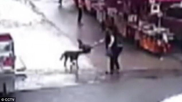 Trung Quốc: Chó điên làm loạn suốt 2 tiếng, tấn công hơn 20 người trên đường phố - Ảnh 3.