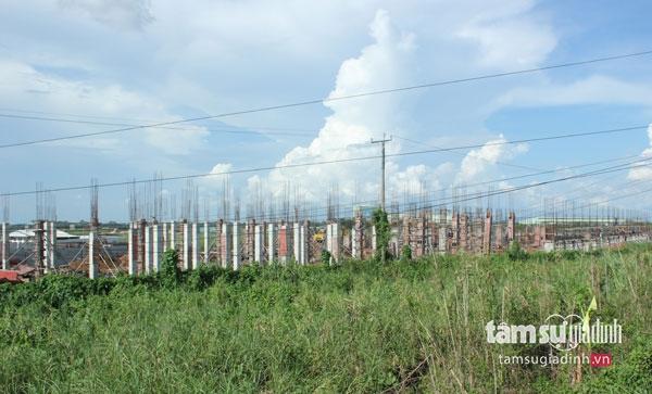 """Người dân """"run rẩy"""" vì nhà máy giấy lớn bậc nhất thế giới sắp vận hành ở miền Tây - Ảnh 2."""