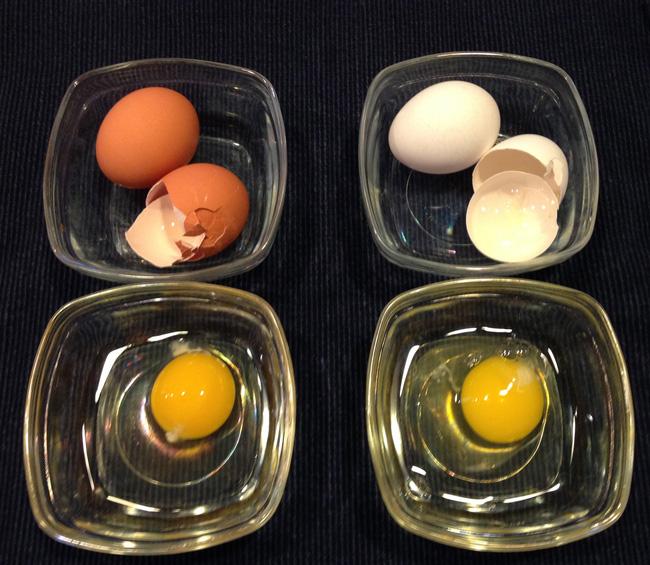 Nhiều người chọn mua trứng màu nâu mà không biết đến sự thật này - Ảnh 3.