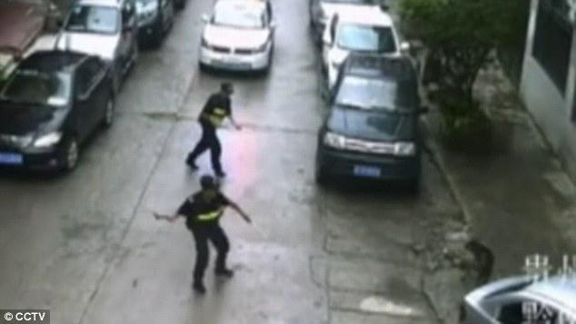Trung Quốc: Chó điên làm loạn suốt 2 tiếng, tấn công hơn 20 người trên đường phố - Ảnh 5.