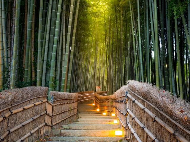 19 bức ảnh lý giải vì sao Nhật Bản có tới 2 thành phố đáng sống nhất thế giới - Ảnh 7.