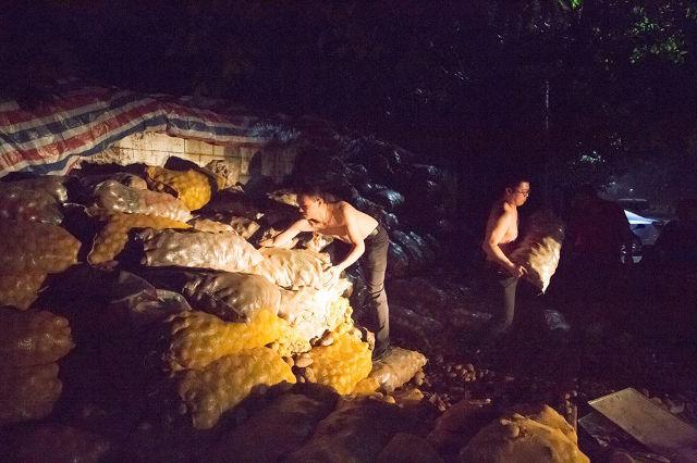 Lão nông khốn khổ với 32 tấn khoai tây bị trả lại vậy nhưng chỉ trong 1 đêm điều kỳ diệu đã xảy ra - Ảnh 7.