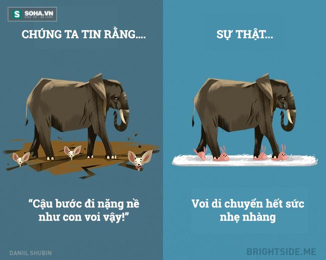 Những sự thật về động vật khiến nhiều người ngã ngửa vì bất ngờ - Ảnh 6.