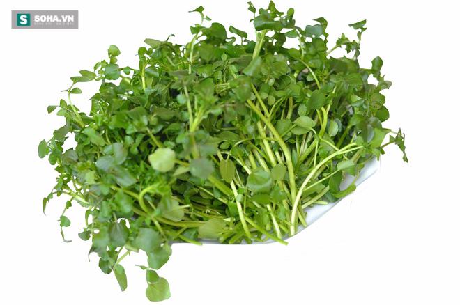 Danh sách loại 41 rau và trái cây giàu chất dinh dưỡng nhất - Ảnh 1.