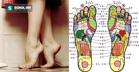 Kiễng gót chân: Bài tập mang lại 10 tác dụng chữa bệnh hiệu quả - Ảnh 4.