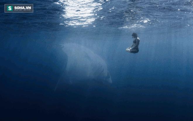 Hội chứng sợ biển: Nỗi ám ảnh kinh hoàng đến từ đại dương! - Ảnh 1.