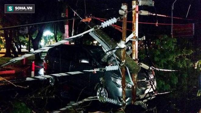 Cây bật gốc kéo ngã trụ điện, đè trúng 7 ô tô trong trận mưa lớn - Ảnh 2.