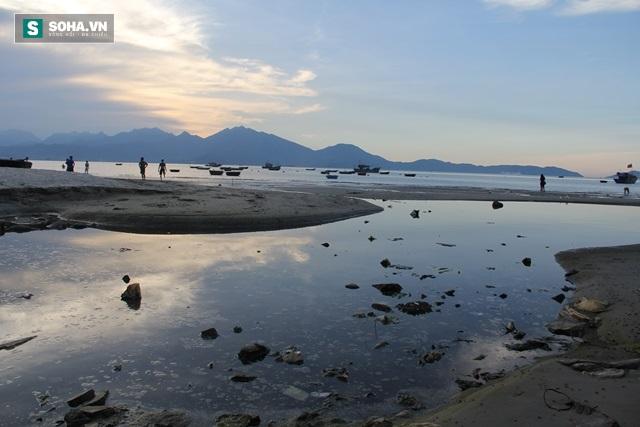 Biển Đà Nẵng đang bị đầu độc như thế nào? - Ảnh 3.