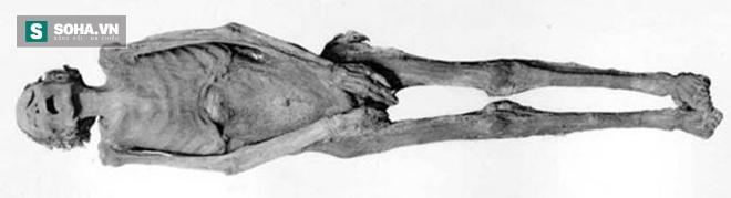 Truy tìm bí ẩn trăm năm của xác ướp la hét nổi tiếng ở Ai Cập - Ảnh 1.