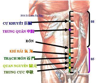 Y học TQ tiết lộ 3 điểm trên cơ thể xoa bóp hàng ngày sẽ giúp bổ thận, giải độc, an thần - Ảnh 1.