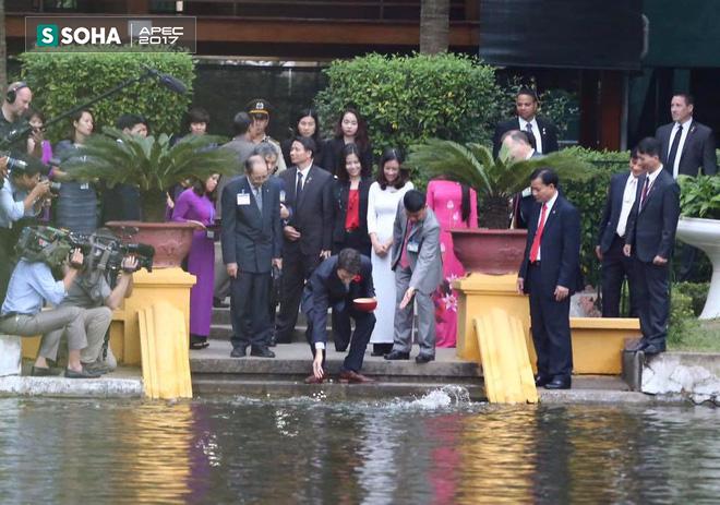 Thủ tướng Canada Justin Trudeau thăm Nhà sàn Bác Hồ và cho cá ăn - Ảnh 4.