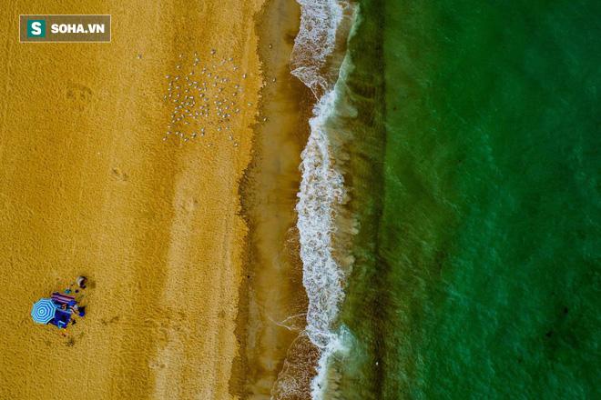 Bộ ảnh tuyệt vời của National Geographic: Khi thế giới hoang dã hóa mình thành kiệt tác - Ảnh 1.