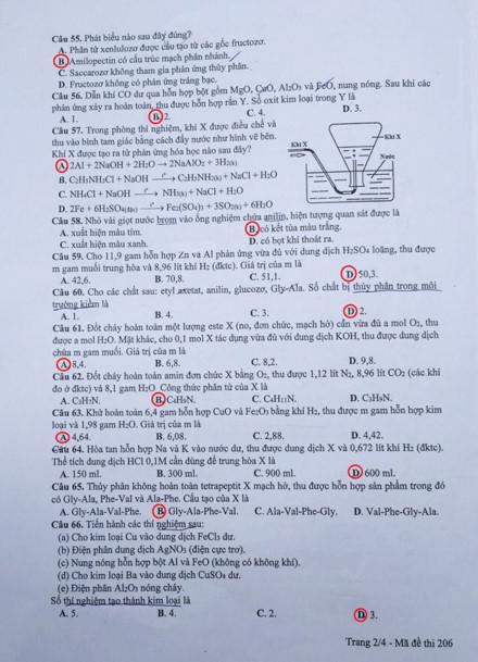 Đáp án môn Hóa Học mã đề 206