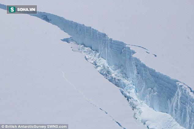 Núi băng hơn 1 nghìn tỷ tấn vừa vỡ khỏi lục địa Nam Cực, hiểm họa tiếp theo là gì? - Ảnh 1.
