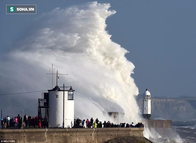 Siêu bão tồi tệ nhất 30 năm ở Anh: Sức gió mạnh khiến chim muông bay tan tác - Ảnh 1.