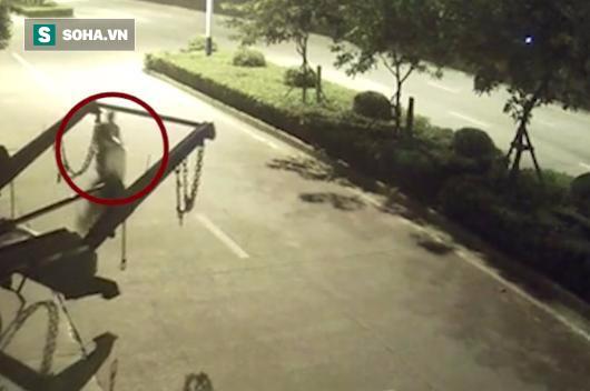 Sự thật đáng sợ đằng sau bóng đen bị treo lơ lửng sau xe chở rác - Ảnh 1.