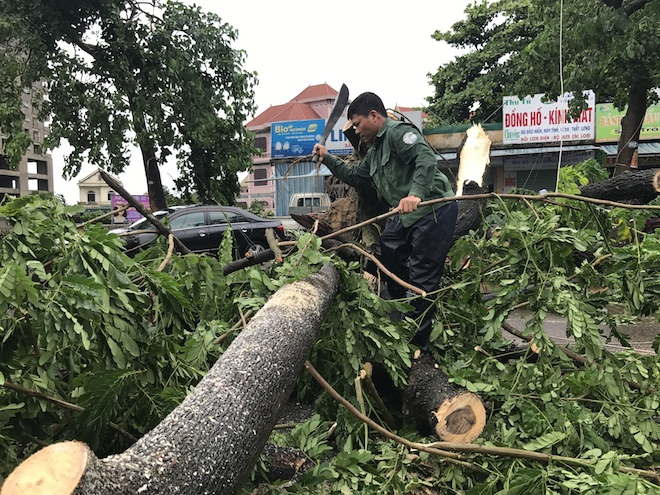 Nghệ An: Tan hoang sau bão, cây xanh bật gốc đè ô tô, người dân chặt cây tìm đường vào nhà - Ảnh 15.
