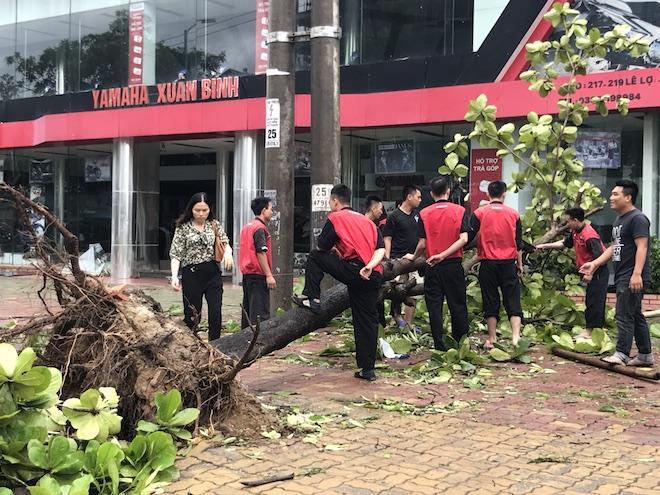 Nghệ An: Tan hoang sau bão, cây xanh bật gốc đè ô tô, người dân chặt cây tìm đường vào nhà - Ảnh 6.